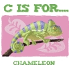 chameleon.psd