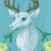 deercard-web